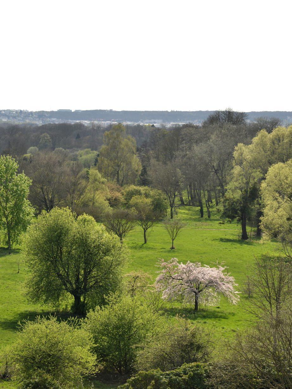 Entrée gratuite de L'Arboretum de Versailles-Chèvreloup