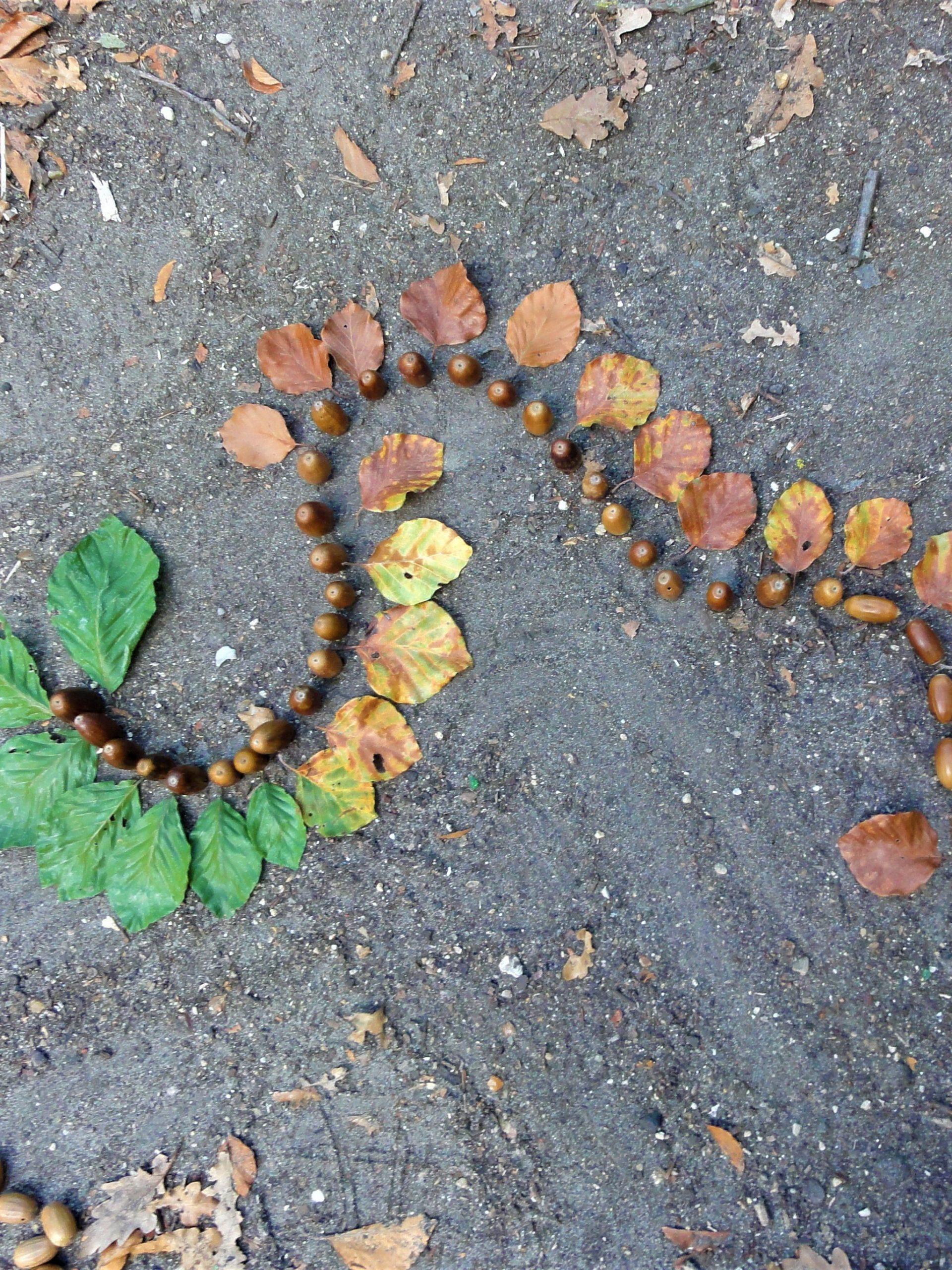 Balade nature créative