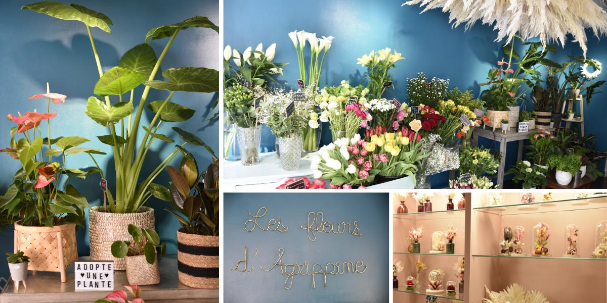 Boutique fleurs Versailles