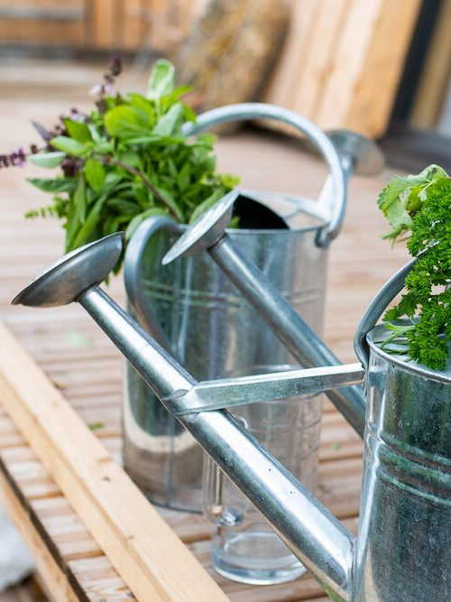 Concevoir son jardin en permaculture