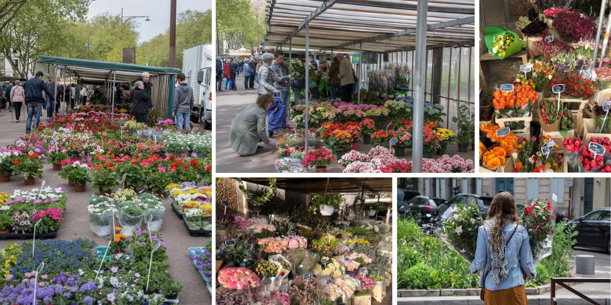 Marché aux fleurs Versailles