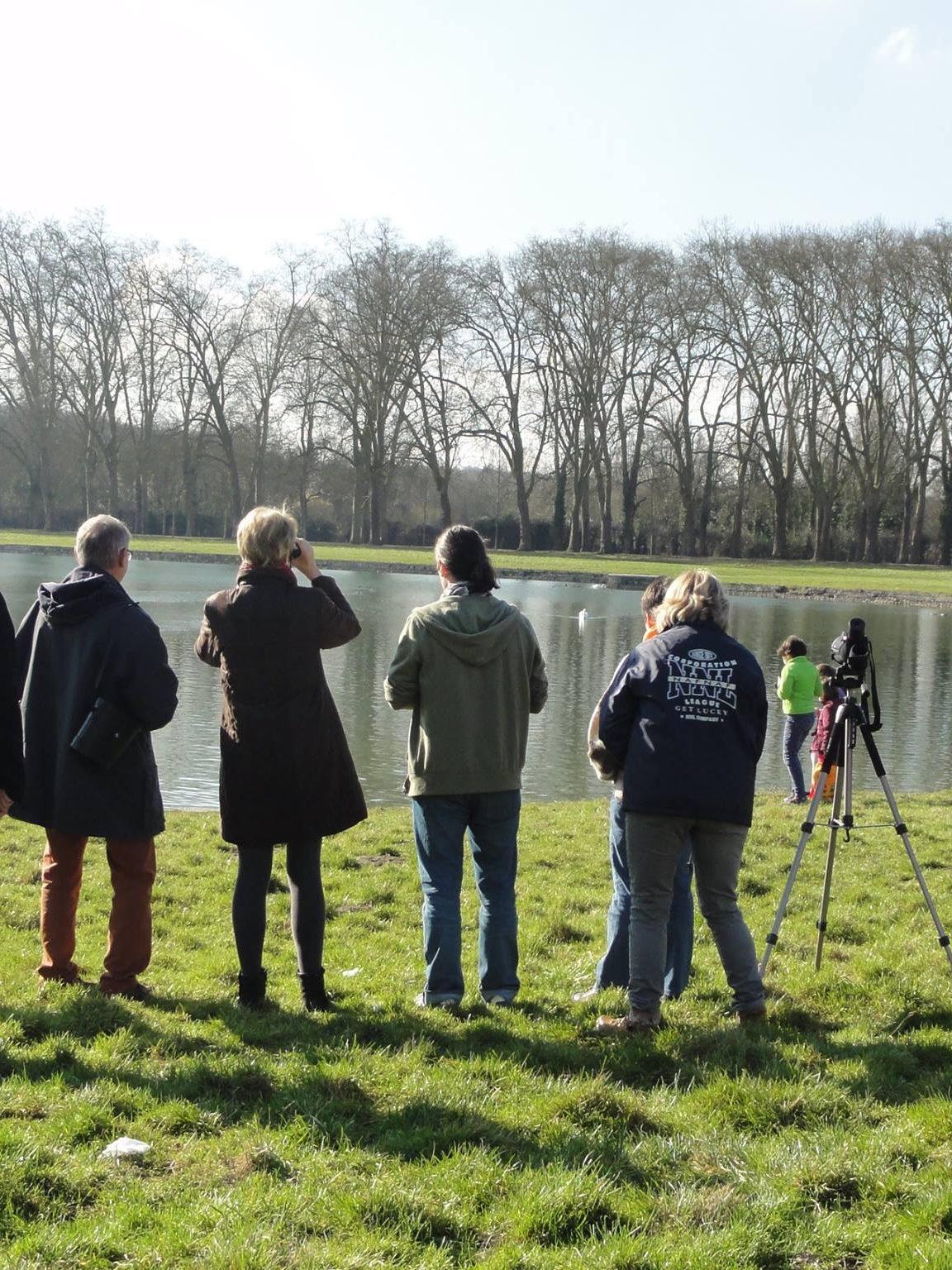 Initiation à l'ornithologie autour de la pièce d'eau des Suisses