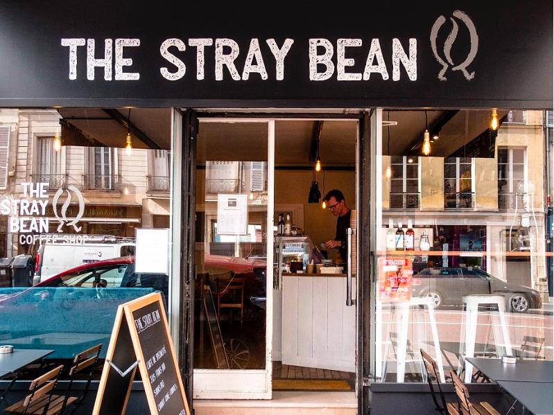 Photo The Stray Bean